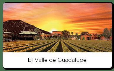 Sunset over vineyards of the Valle de Guadalpue