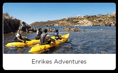 Group of people kayaking while watching seabirds
