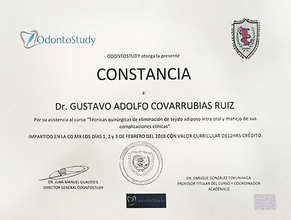 Vallarta dentist doctor certificate